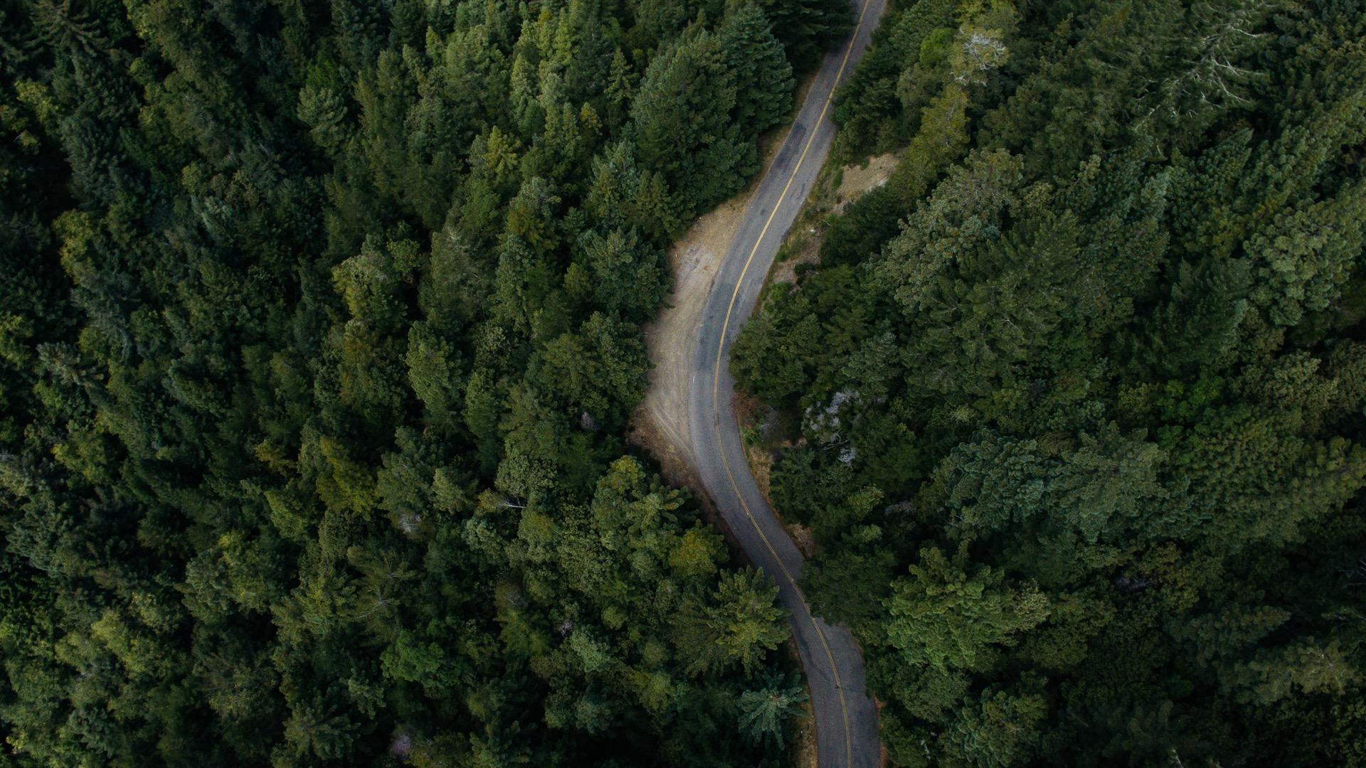Roadmaps – choose your destination!
